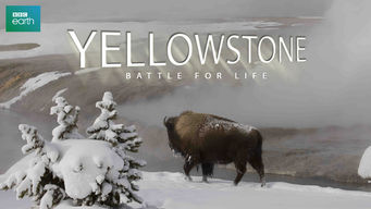 Yellowstone: Battle for Life (2009)