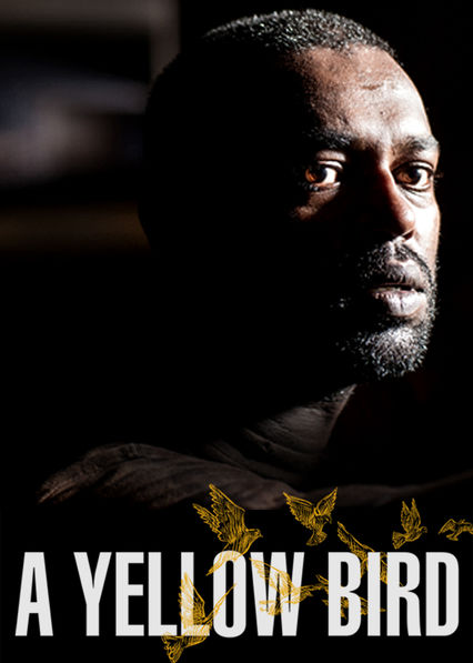 A YELLOW BIRD on Netflix AUS/NZ